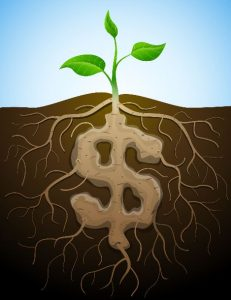 Profitable Soil